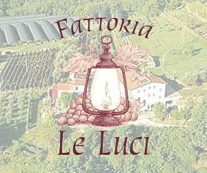 FATTORIA LE LUCI