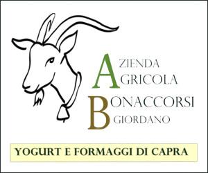 AZIENDA AGRICOLA BONACCORSI GIORDANO