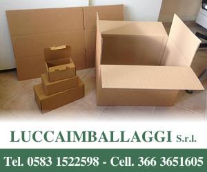 LUCCAIMBALLAGGI S.R.L.