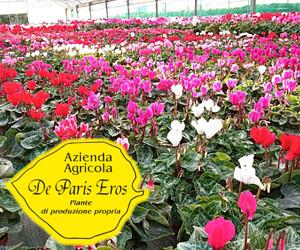 AZIENDA AGRICOLA DE PARIS EROS