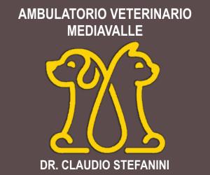 AMBULATORIO VETERINARIO MEDIAVALLE