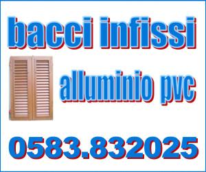 BACCI INFISSI IN ALLUMINIO E PVC SNC