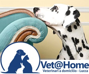 VET@HOME - VETERINARI A DOMICILIO