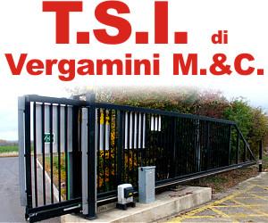 T.S.I. DI VERGAMINI M. & C.