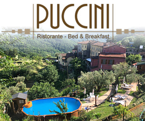 BED & BREAKFAST PUCCINI